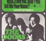 the_doors-hello_i_love_you._wont_you_tell_me_your_name